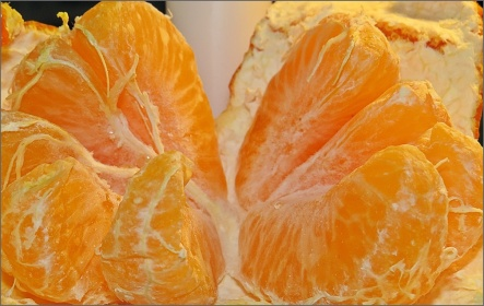 clementinklyftor