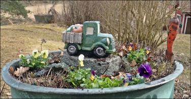 Första penséerna är planterade i koppargrytan...