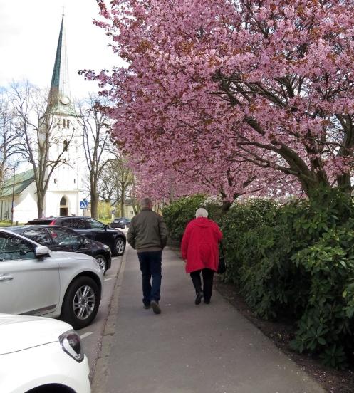Vackert mitt i centrum längs Sjögatan ovanför Stadsparken...