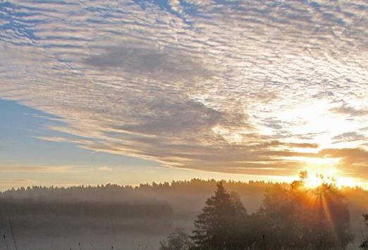 Soluppgång en sommarmorgon.