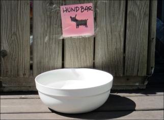 ... för hundar ...