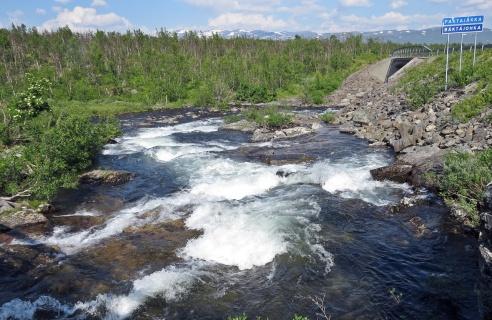 Enligt folk som bor i fjällen så är det den sena vårfloden som ger de strida älvarna även nu i månadsskiftet juli/ augusti