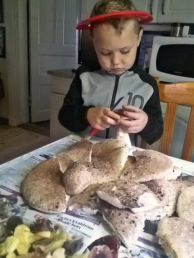 Hemma i farmors kök återstår den tråkiga delen ... att rensa svampen.