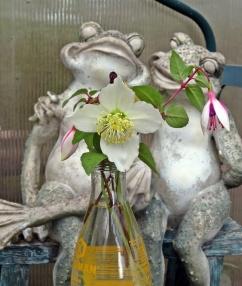 trädgårdens kärlekspar har fått flytta in i växthuset...