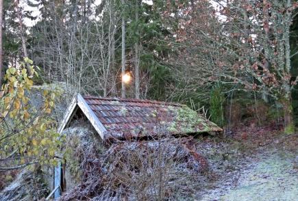 Högre än så här kommer inte solen bakom skogen ...