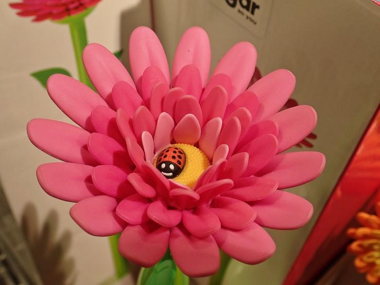 Längst ner på stjälken till den här blomman finns en wc- borste!