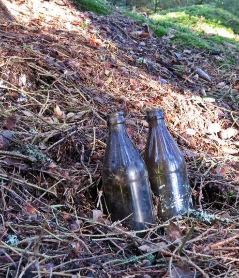 Vet inte vem som ställt dem här ... två tomma flaskor, snyggt uppställda mitt i skogen ...