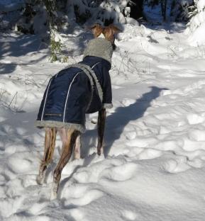 8 februari, Olle i vinterjacka ...