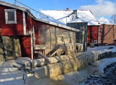 Vattnet bildar fina droppar som blandas med utblåset från kvarnen och bildar ett tjockt ispansar.