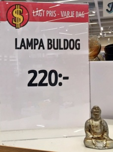 Hm ... buldog?