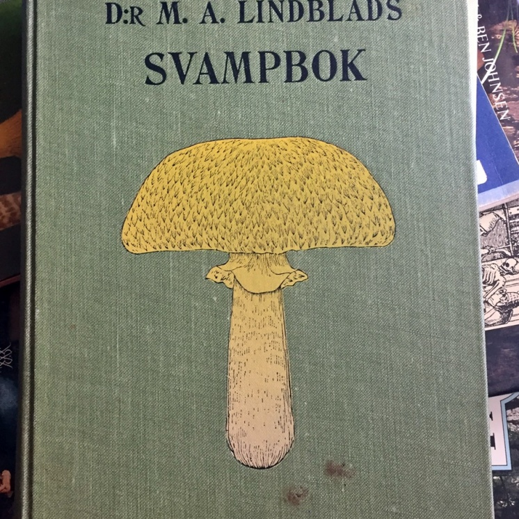 Dr. M.A. Lindblads svampbok från 1901 ... till den finns en svampplansch - tyvärr har jag inte den ...