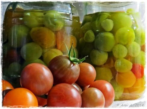 Tomat(Solanum lycopersicum) är en potatisväxt. Botaniskt sett kategoriseras växtensfruktersombär.