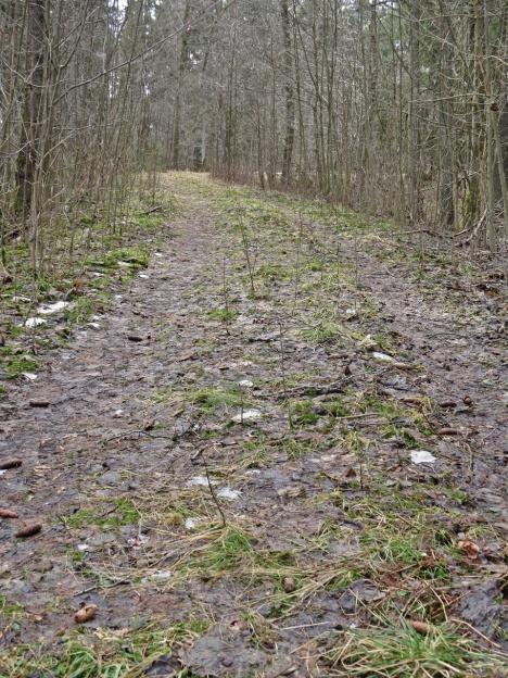 Den gamla vägen.