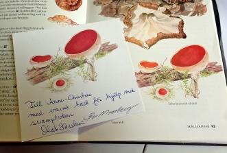 Den scharlakansröda vårskålen plockade jag och skickade till tecknaren Bo Mossberg ... och detta fina tackkort kom tillsammans med boken.