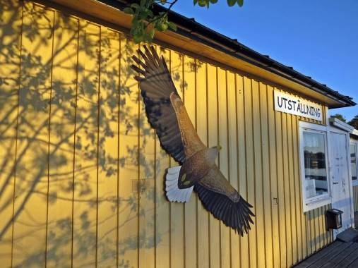 På väg ut till badholmarna finns en utställning med skärgårdens fåglar och fiskar ...