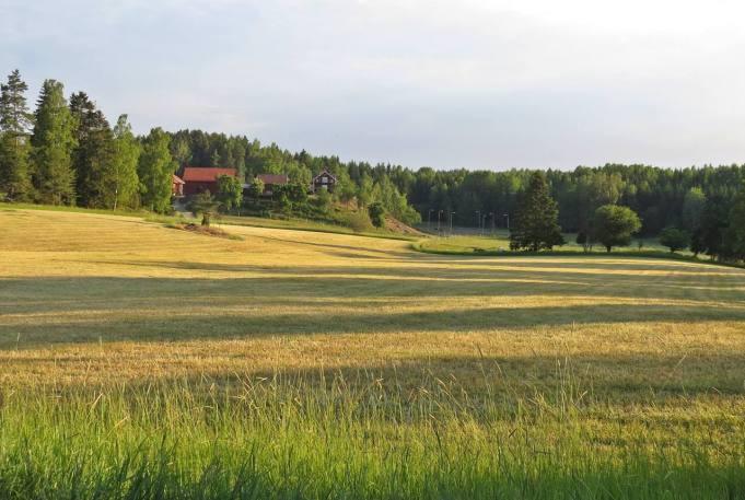 På hemväg ... med vy mot Granmyra gård, våra närmaste grannar :)