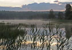 Tidig morgon vid sjön