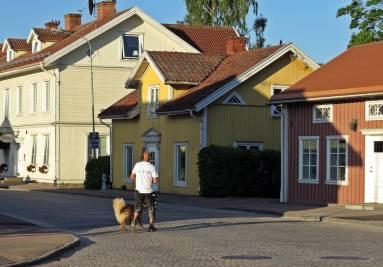 Morgonpromenad med hund