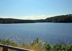... och .genom det vackra landskapet som känns mer som södra norrland och inte som Östergötland.