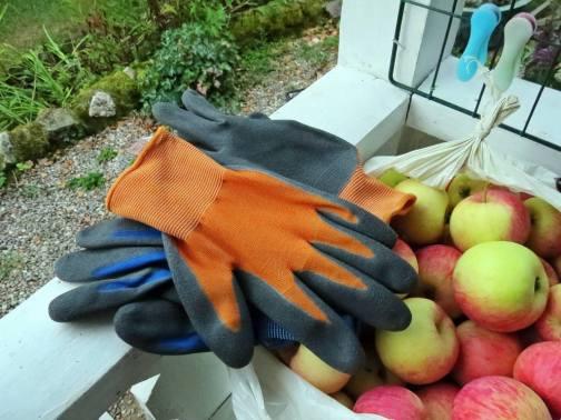 Nya trädgårdsvantar, en påse äpplen och klädnypor - tre användbara saker i samma bild.