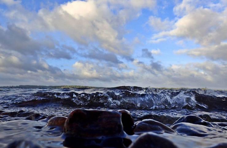 20 augusti Härlig morgonpromenad vid sjökanten.