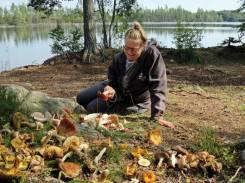 nettan satte sig ner en stund för att studera svamparna ...