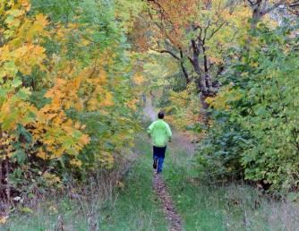 Hundrädd joggare so ropade på långt håll - Har du hund? Nix, sa jag ... han trodde jag hade en svart påse i handen ... det var min kamera :)
