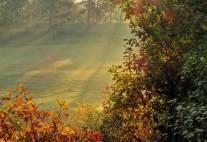 13 oktober. vacker höstmorgon.