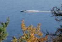 En båt passerar i hög fart