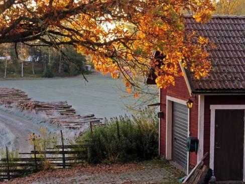 26 oktober. Fin höstmorgon.