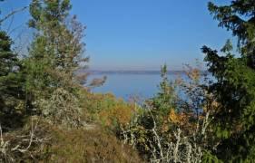 På andra sidan sjön ligger Svärtinge - ett område med många lyxiga villor ...