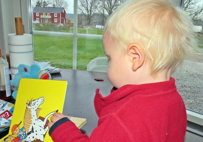 Charlie hämtade favoritboken och den tittade vi i både framåt och bakåt. I det röda huset bor barnbarnens tre kusiner ...