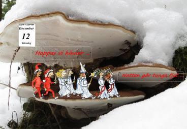 12 december - dagen före lucia