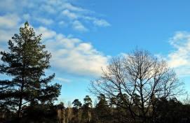 Blå himmel med några molntussar ...