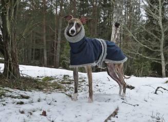 Det är kallt Anki ... nu vill jag gå in!