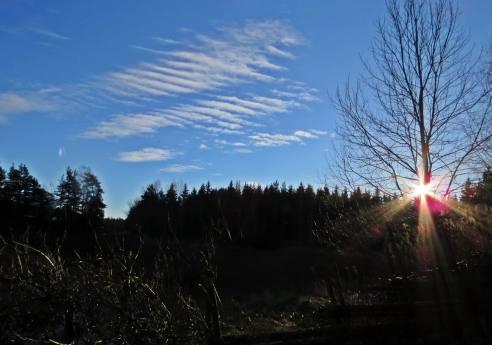 Blå himmel och solsken ...