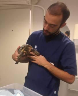Trevlig veterinär poserade gärna ...