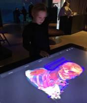 Stora datorskärmar som man kunde styra med händerna och undersöka hur människor och djur ser ut ... hur hjärnan fungerar ... mm ...