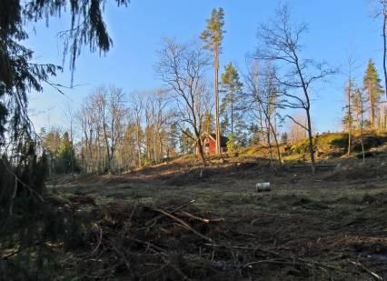 närmar mig Brunnsvik - här har skogsmaskinerna varit och plötsligt ser man torpet på långt håll.