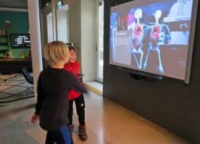 Alla rörelser filmades och allt på skärmen var skelett ... och lite anatomisk kunskap ... här om tjocktarmen ...