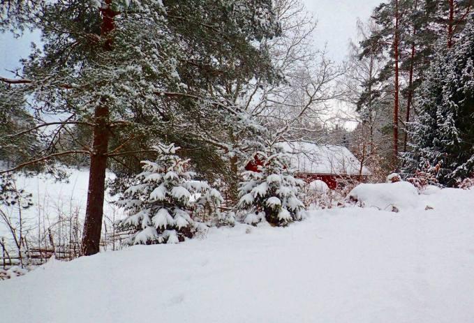 Mer än tillräckligt med snö.