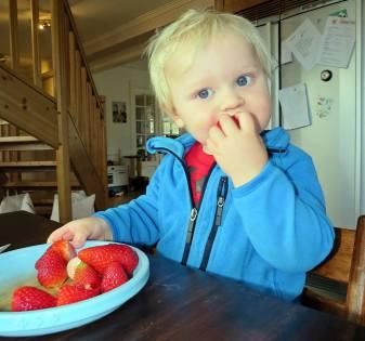 ... och stor glädje när Mamma och pappa kom hem - och det kom fram jordgubbar!