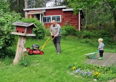 Calle klipper gräset ... Charlie tittar på en stund, men bestämmer sig sen för att ...