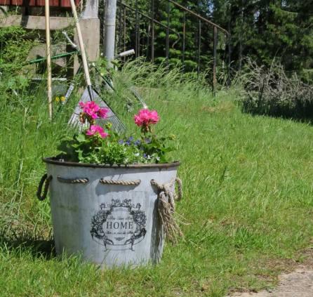 ... och det gör blommorna också!