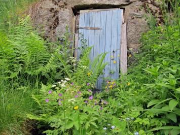 Igenväxt ... nu blir det problem om jag vill gå in i källaren ...