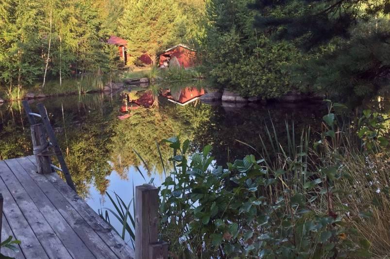 Tidig morgon ... utsikt över en av dammarna med en stuga att hyra ...