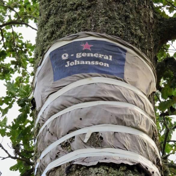 ... zoomar in, men fattar ändå inte vad det är och varför det finns där på eken!