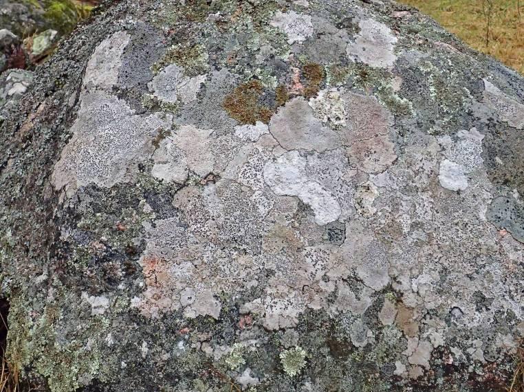 På en sten fanns flera olika ... som en karta ...